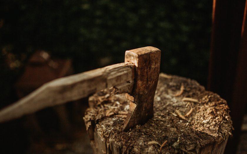 kevin schmid 65es iLjvVo unsplash 840x525 - Skal du have fældet træer i haven?